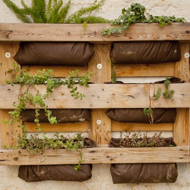 Le giornate delle api e Casa netural